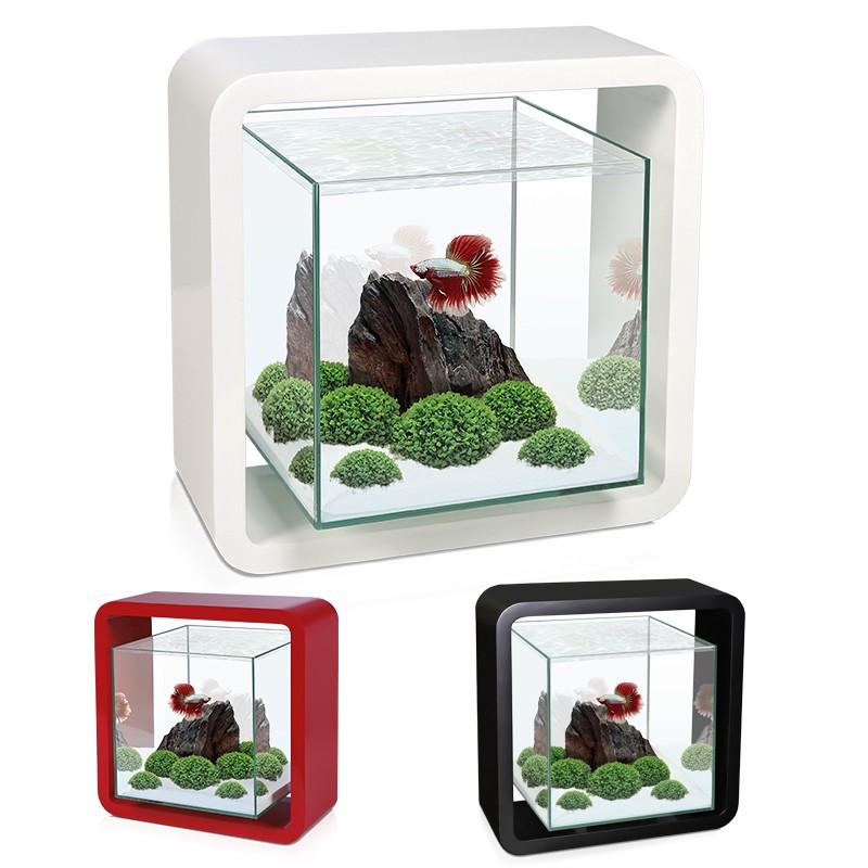 askoll acquario betta life in vetro piccolo mini