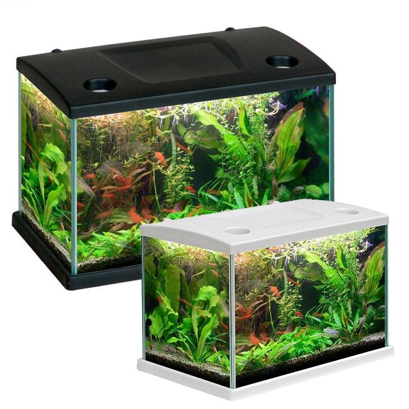 Mtb acquari cleo acquario accessoriato completo 34x23x24cm for Acquario completo tartarughe