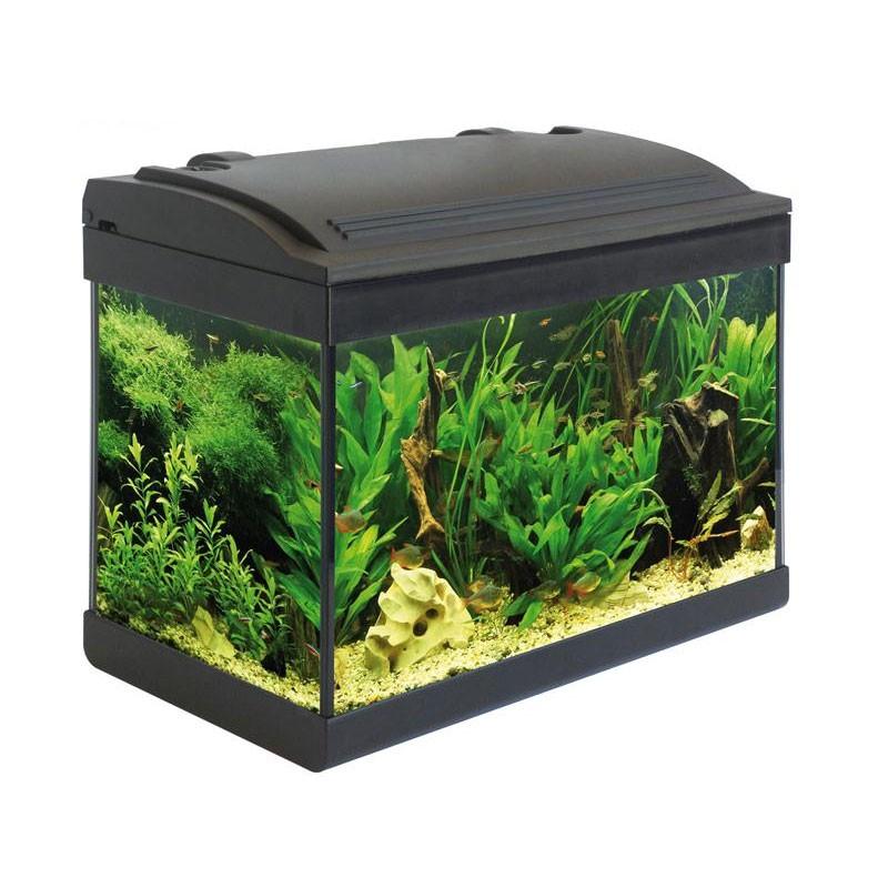 Acquario milo 43 completo di filtro pompa lampada luce for Acquario completo tartarughe