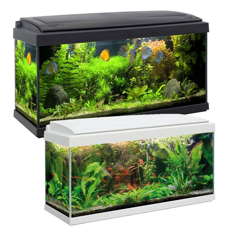 Mtb acquari milo 80 acquario accessoriato completo di for Acquario tartarughe completo