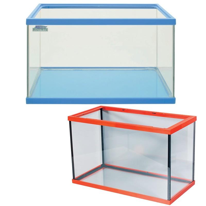 Acquario in vetro vaschetta per pesci rossi 20 litri for Acquario per pesci rossi usato