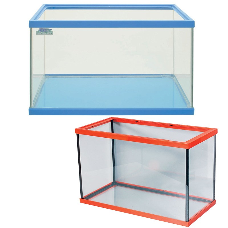 Acquario in vetro vaschetta per pesci rossi 20 litri for Filtro vasca pesci rossi