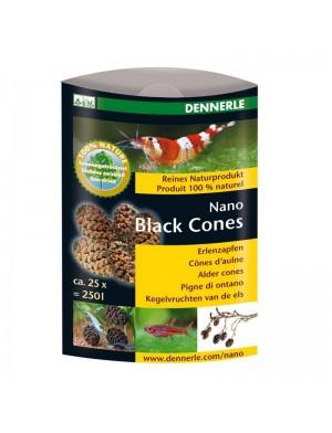 DENNERLE_BLACK_CONES