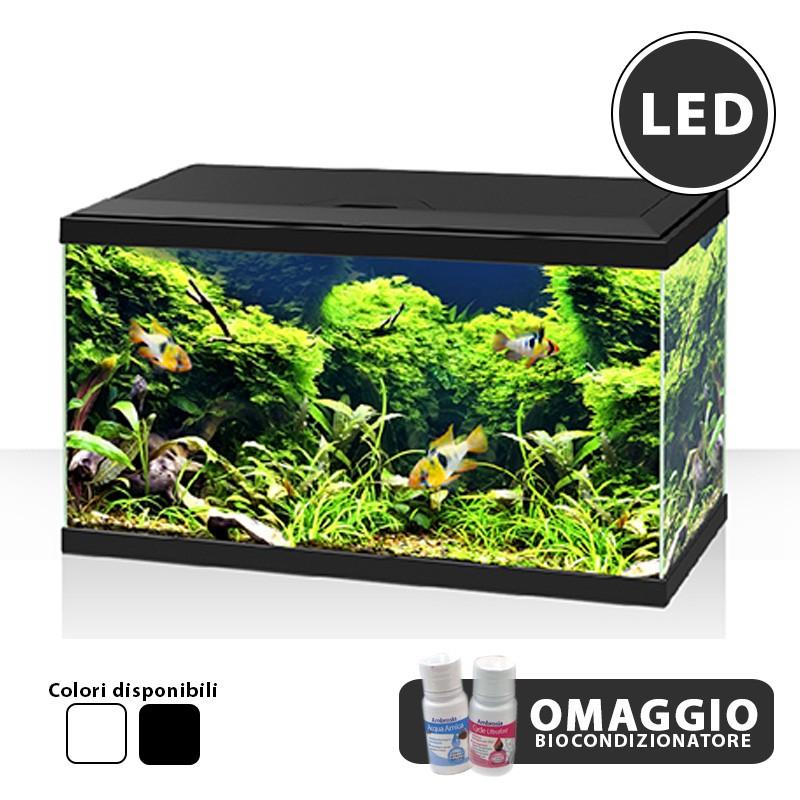 askoll acquario in vetro ciano aqua 60 completo accessoriato con