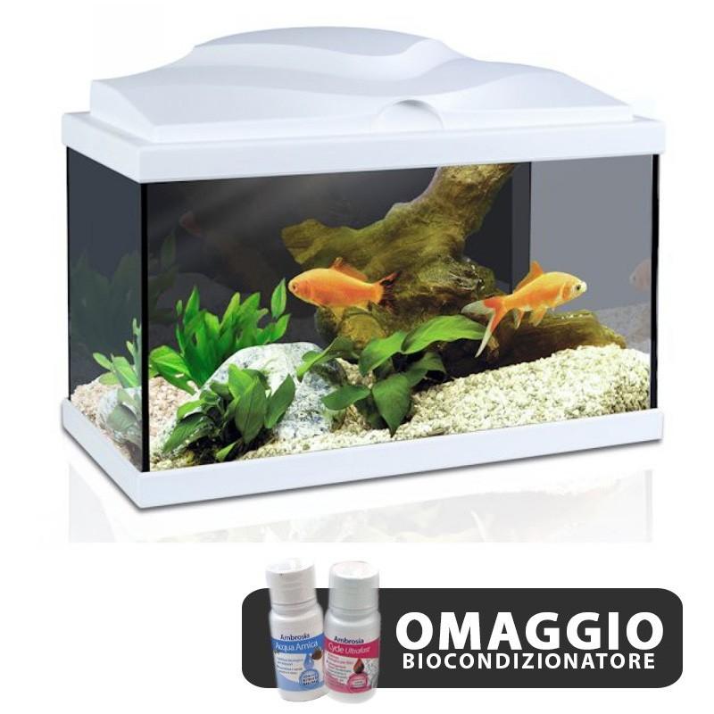 Askoll acquario aqua 20 light white bianco 17 litri for Acquario tartarughe completo