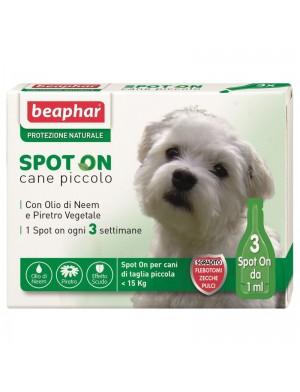 spot_cane_piccolo