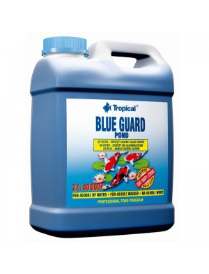 BLUE_POND_GUARD