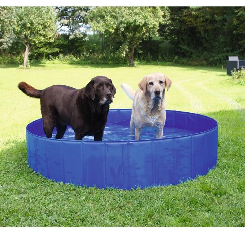 Piscina per cani pieghevole da giardino vasca per animali - Giardino per cani ...