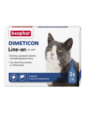 dimetion_gatto